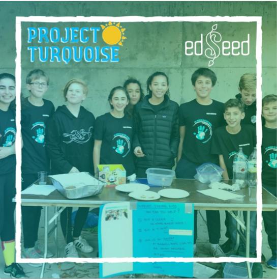 Project Turquoise Zatari