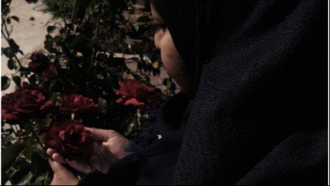 Hanan caught a rose